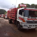 Distribucion Gas Comunal Tachira